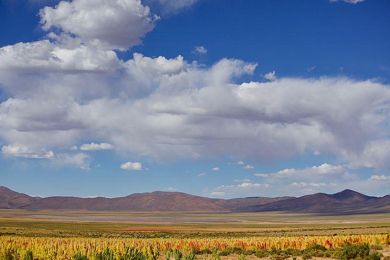 Chiuca Uyuni Salt Flat